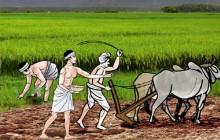 कर्णालीमा अब कृषि अनुदानको साटो ब्याजमा अनुदान