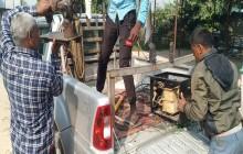 हुकिङ हटाउन खटिएका कर्मचारीमाथि गाउँलेले गरे कुटपिट, गाउँमा विद्युत काटियो